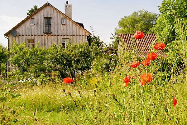 Ferienwohnung Grüne Grube à Homberg (Efze) - Image 1