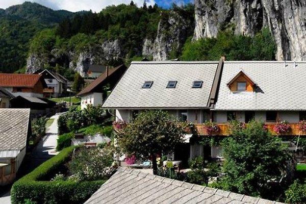 Ferienwohnung in Bled - Bild 1