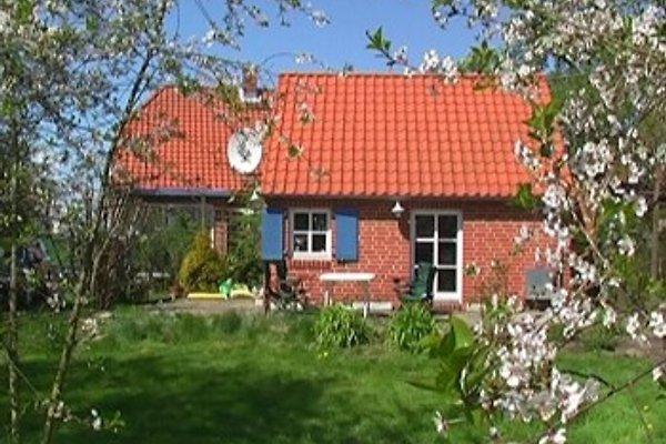 Ferienhaus Tankenhagen en Dassow - imágen 1
