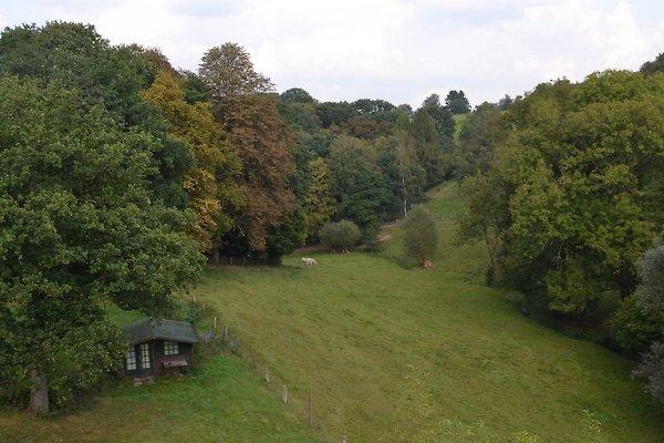 Sicht in Garten und Landschaft v Terrasse