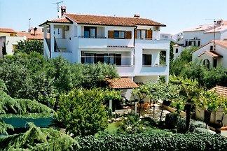 Holiday flat in Medulin