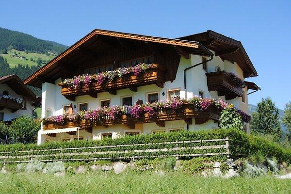 Appartements à la crème  à Mayrhofen - Image 1