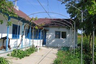 Cormorant Home