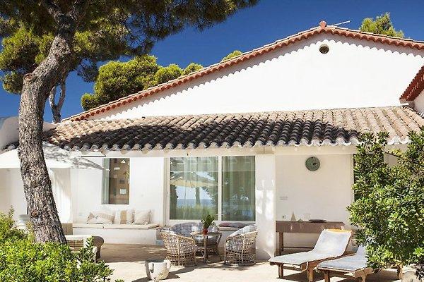 Holiday Villa ESTATE in Pula - immagine 1