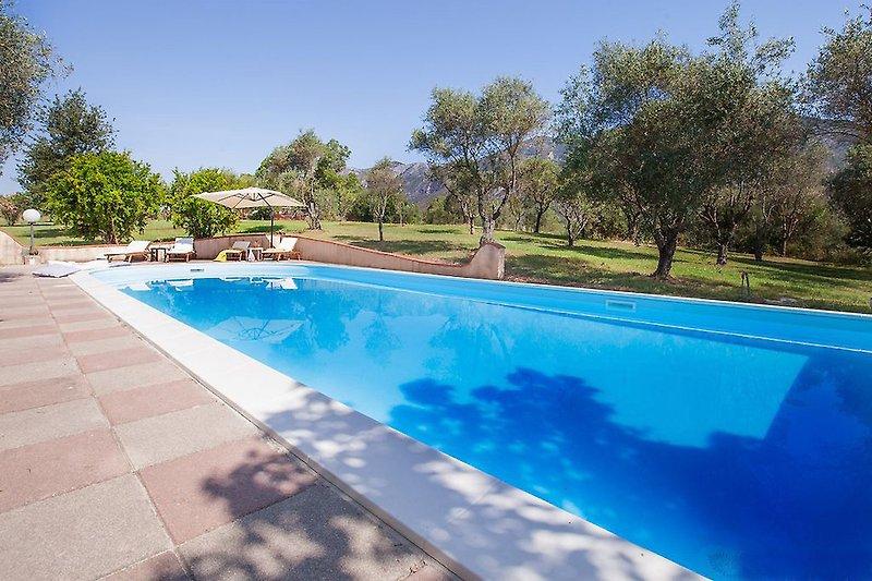 Villa PALAZZO in Iglesias - immagine 2