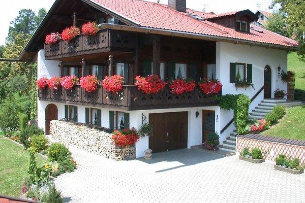 Ferienwohnungen  A. Mangold  in Saulgrub - immagine 1