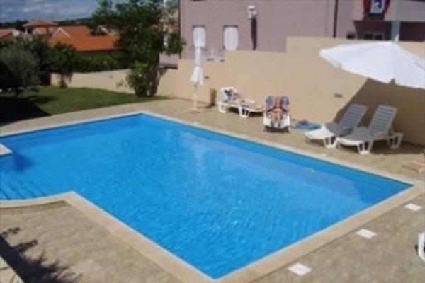 Ferienhaus Kroatien Istrien  in Banjole - Bild 1