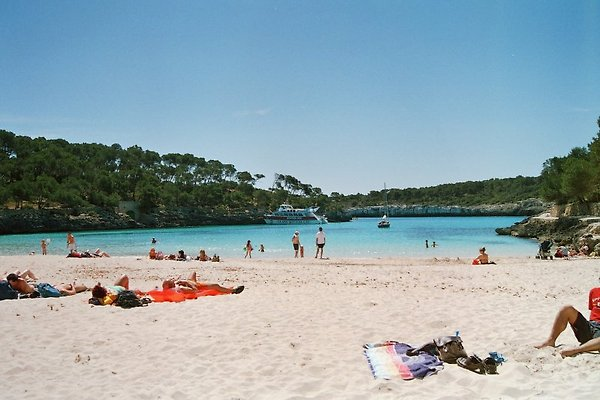 Strand 1 Mondrago