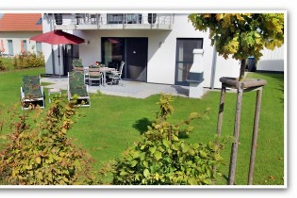 Villa Hügel 5* EG-Fewo à Göhren-Lebbin - Image 1