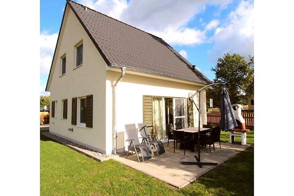 Ferien-Haus Sonnenschein à Göhren-Lebbin - Image 1