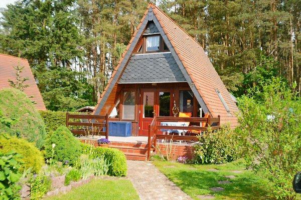 Ferienhaus in Canow - Bild 1