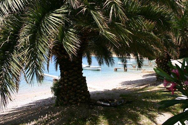 ♥ directo a la playa @ ♥ | Omis en Omiš - imágen 1