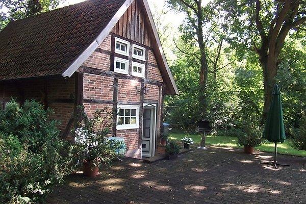 Kleines Backhaus