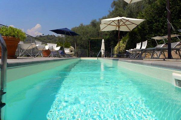 it339 Civezza Ligurien mit Pool in Civezza - Bild 1