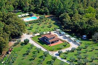 In der grünen Landschaft der Toskan