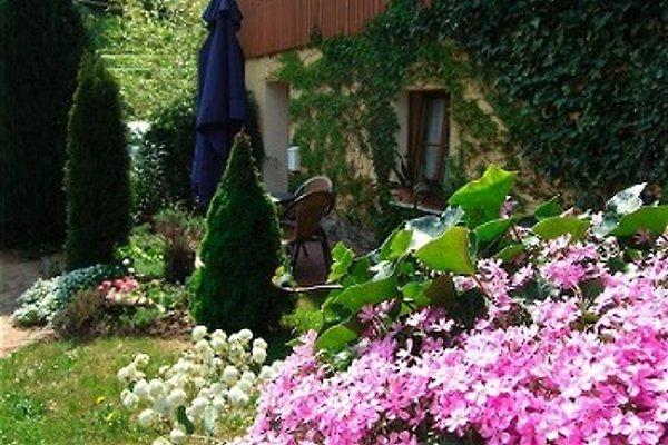 Ferienwohnung Kusch in Lichtenhain - immagine 1
