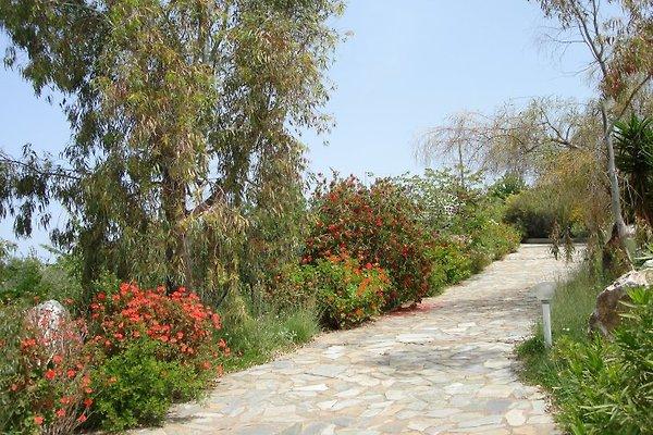 Villa Panorama à Kiparissia - Image 1