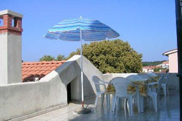 appartament Adri  à Rovinj - Image 1