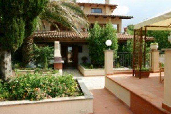 app. Palma in Villa Edera in Manciano - immagine 1