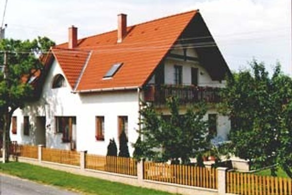 Zsuzsa Panzio in Balatonfüred - immagine 1