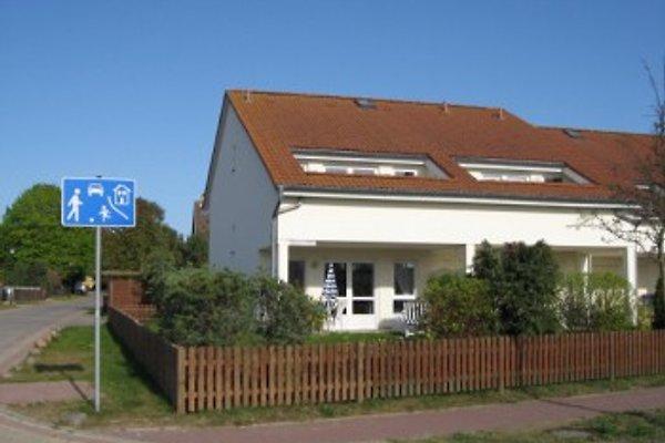 Komfort-Ferienwohnung à Koserow - Image 1