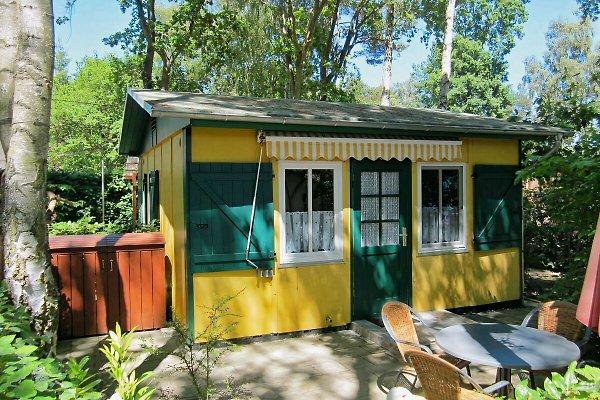 Ferienhaus Waldidyll Glowe à Glowe - Image 1