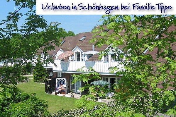 Fam  Tapez Schönhagen Baltique  à Schönhagen - Image 1