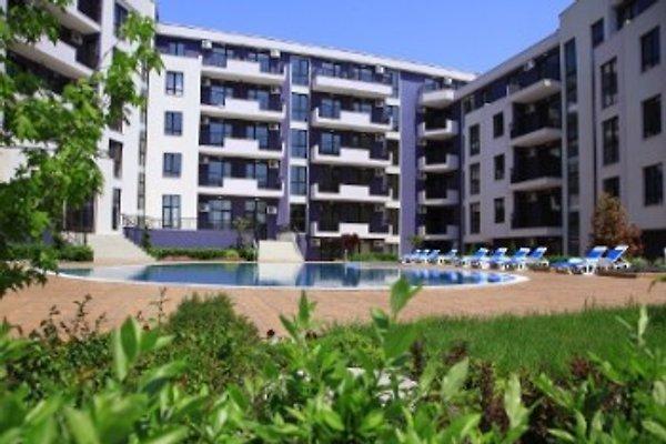 Residence Hotel Amphora Palace en Golden Sands - imágen 1