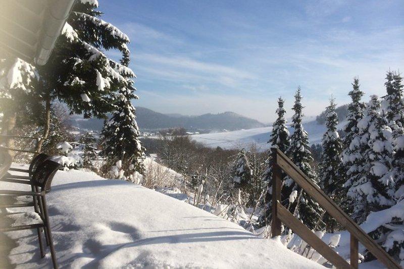 Ihr Ausblick von der Terrasse im Winter!