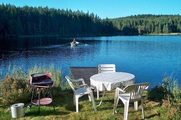 Ferienhaus Dammsjön-Västansjö à Dammsjön-Västansjö - Image 1
