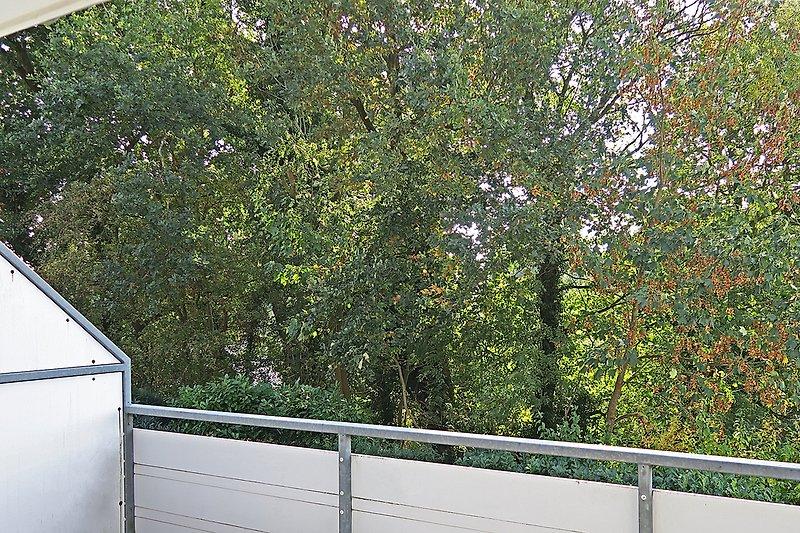 Blick vom Balkon Wohnung Nr. 11