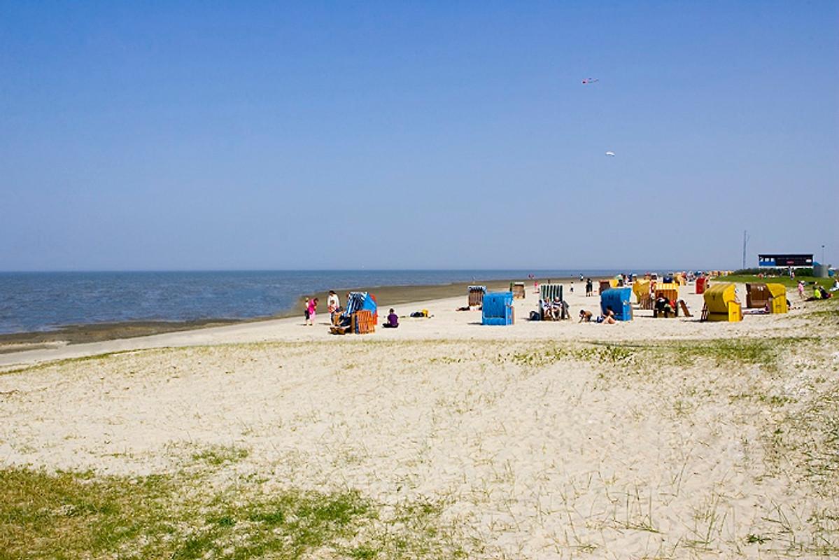 Ferienwohnung Anna Nordsee Ferienwohnung In Dangast Mieten