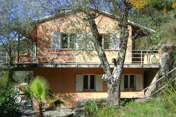 Casa Stella en Negi en Bordighera -  1