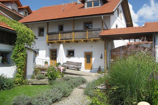 am-peterhof in Grafenau - immagine 1
