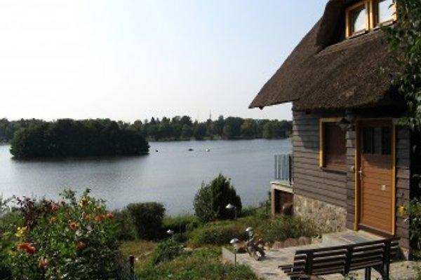 Templin - Reetdachhaus am See en Templin - imágen 1