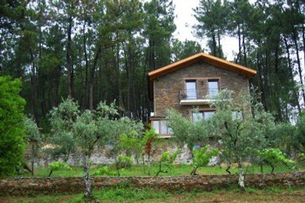 Ferienhaus Casa da Menina à Anceriz - Image 1