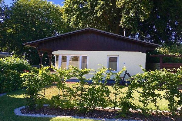 **** Ferienhaus Boddenhus en Glowe - imágen 1
