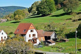 3* Ferienhaus Frech im Münstertahl