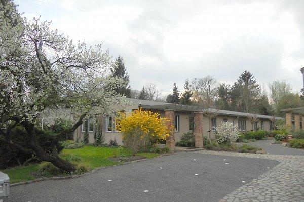 Quartier - Potsdam Hostel in Potsdam - immagine 1
