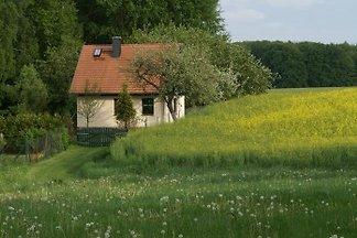 Ferienhaus -Krützseehof