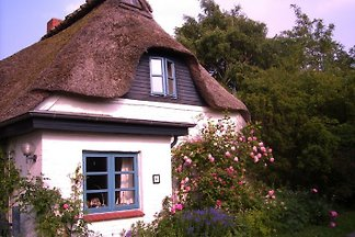 Apartment under the thatched roof