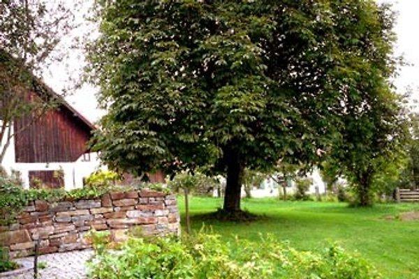 Ferienhaus in grünen Wiesen en Reichling - imágen 1