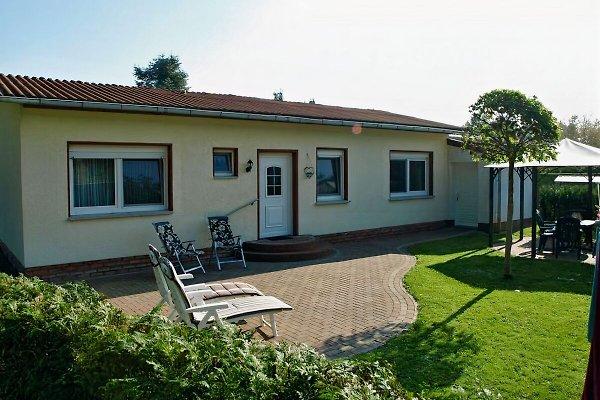 Ferienhaus am Klosterwald  in Dargun - immagine 1