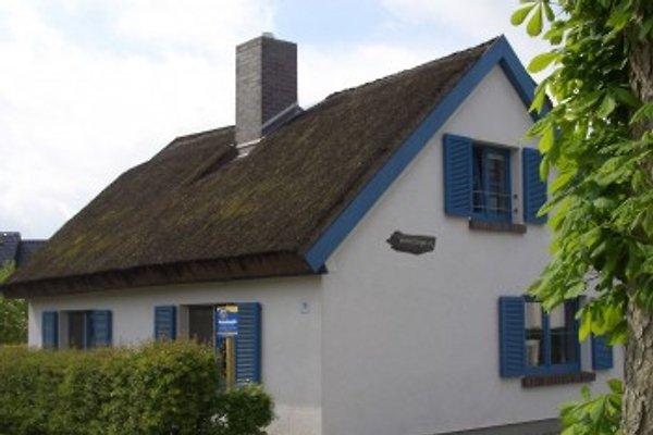 Uriges Reetdachhaus, 2-6 Per   en Zingst - imágen 1