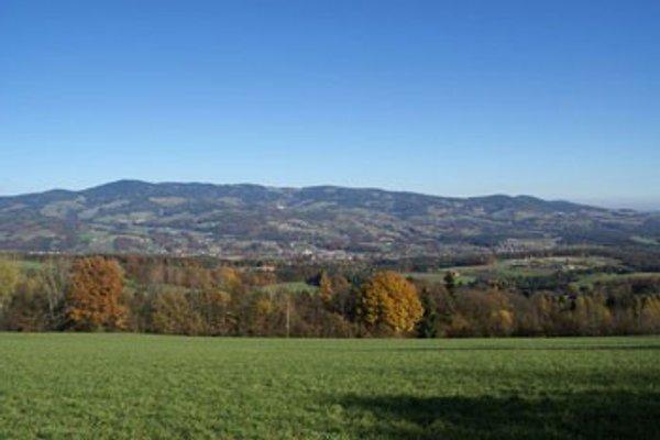 Blick in den Natupark Pöllauer Tal