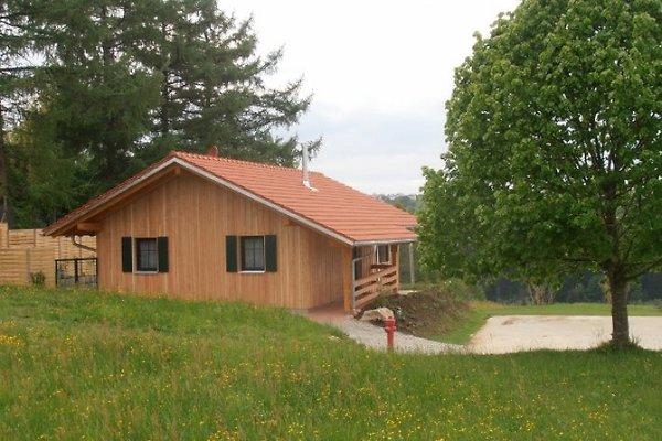 Ferienhaus mit hund bayerwald ferienhaus in for Ferienhaus juist mit hund