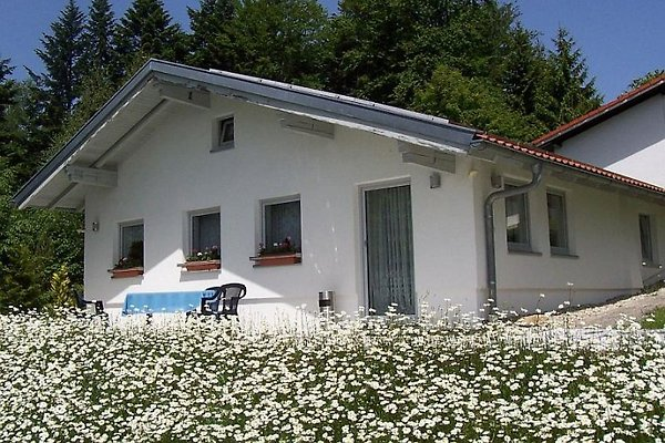 F***** Ferienhaus Lippl in Spiegelau - immagine 1