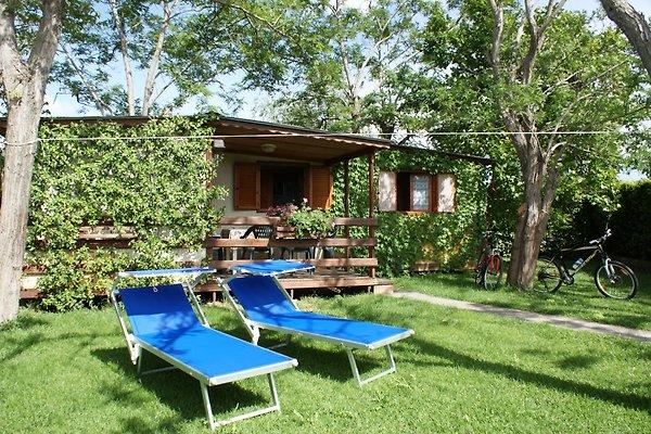 Cottage à Podere Campi al Mare à Castagneto Carducci - Image 1