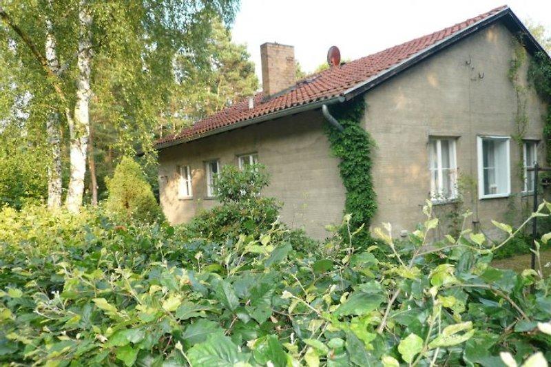 Ferienhaus Schönwalde von der Straße aus gesehen