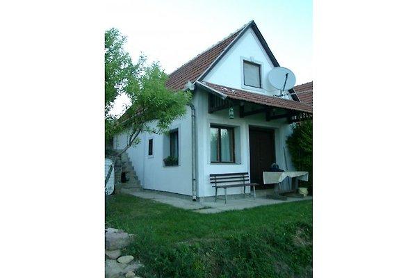 Haus am Balaton am Weinberg in Paloznak - Bild 1